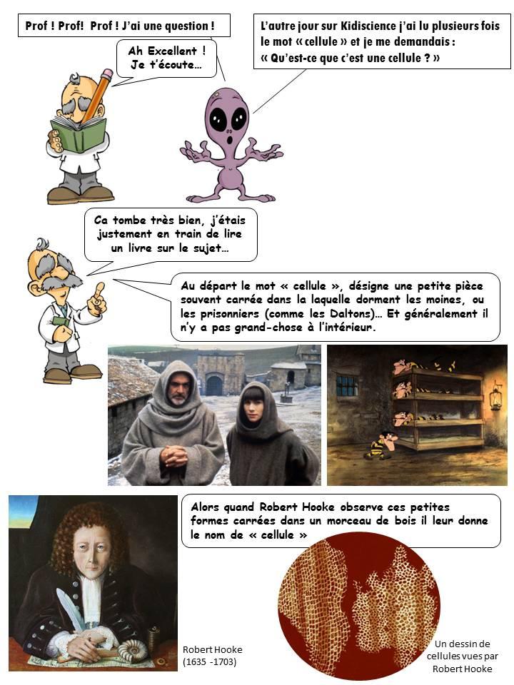 CEllule kidiscience, Au départ le mot «cellule», désigne une petite pièce souvent carrée dans la laquelle dorment les moines, ou les prisonniers (comme les Daltons)… Et généralement il n'y a pas grand-chose à l'intérieur. Alors quand Robert Hooke observe ces petites formes carrées dans un morceau de bois il leur donne le nom de «cellule»