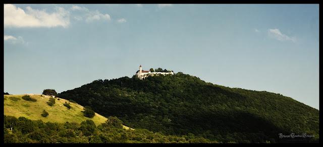Blick auf die Burg Teck vom Fuße des Teckberg