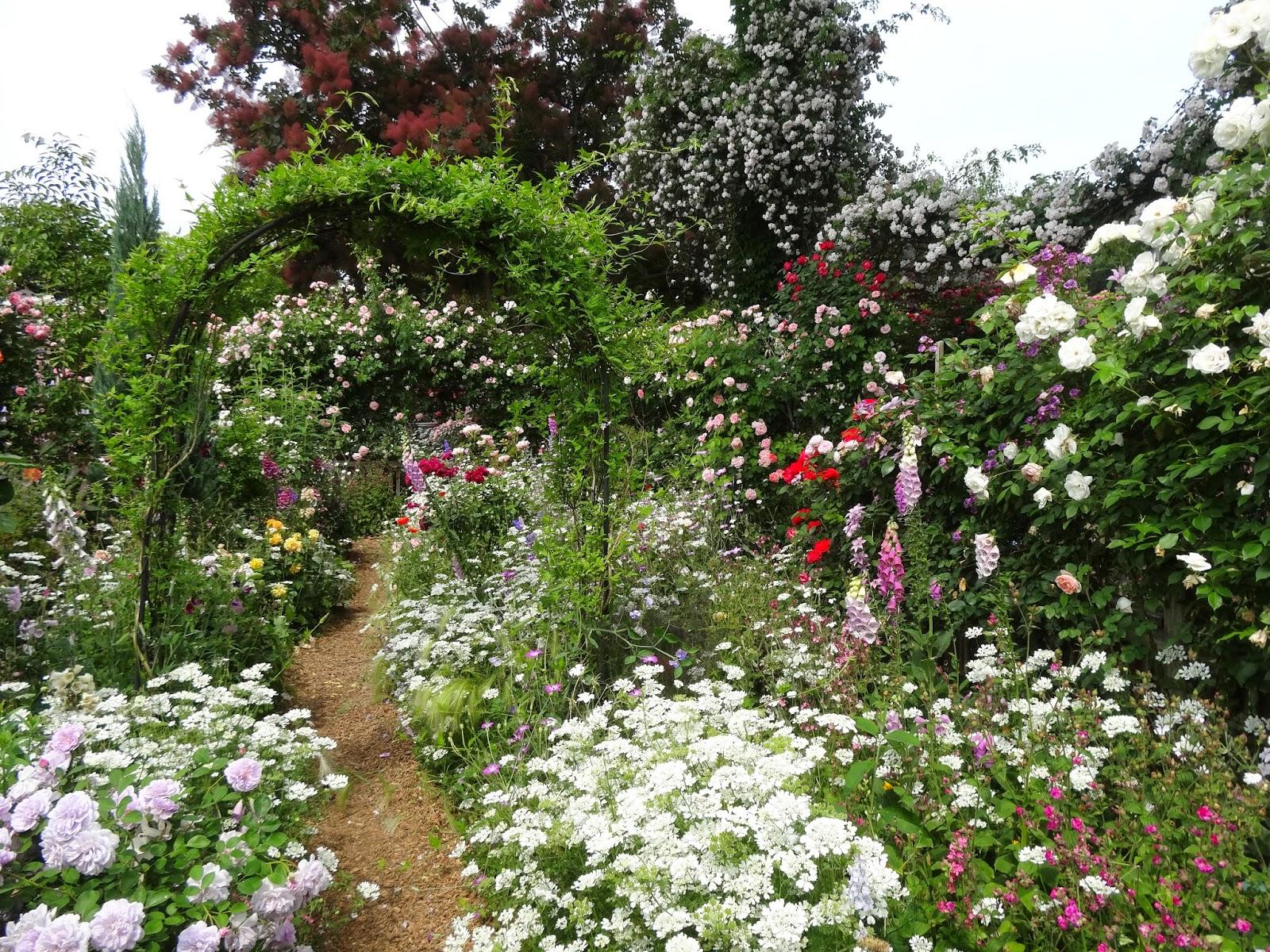 Le jardin secret 2015 for Jardin secret 2015