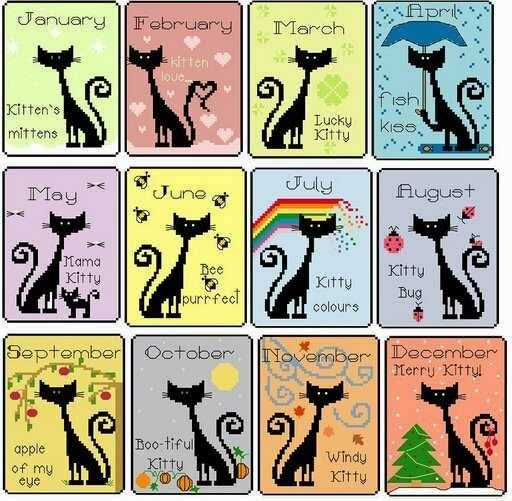 Sal z kocim kalendarzem