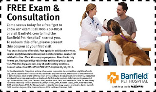 petsmart hospital coupons
