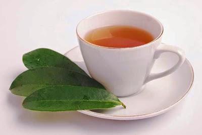 Cara Mengobati Asam Urat Dengan Herbal Alami