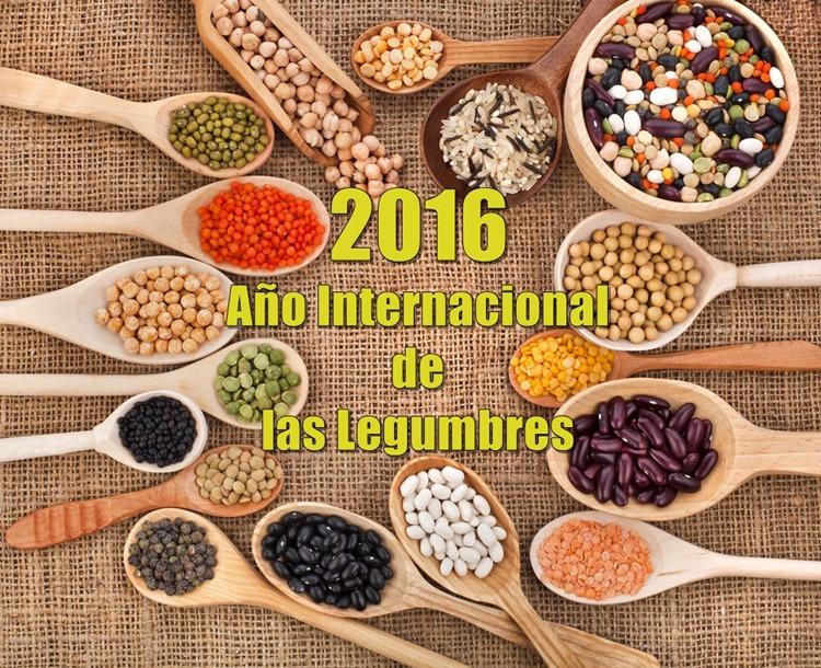 2016 AÑO INTERNAC LEGUMBRES