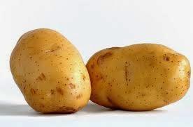 ubi kentang