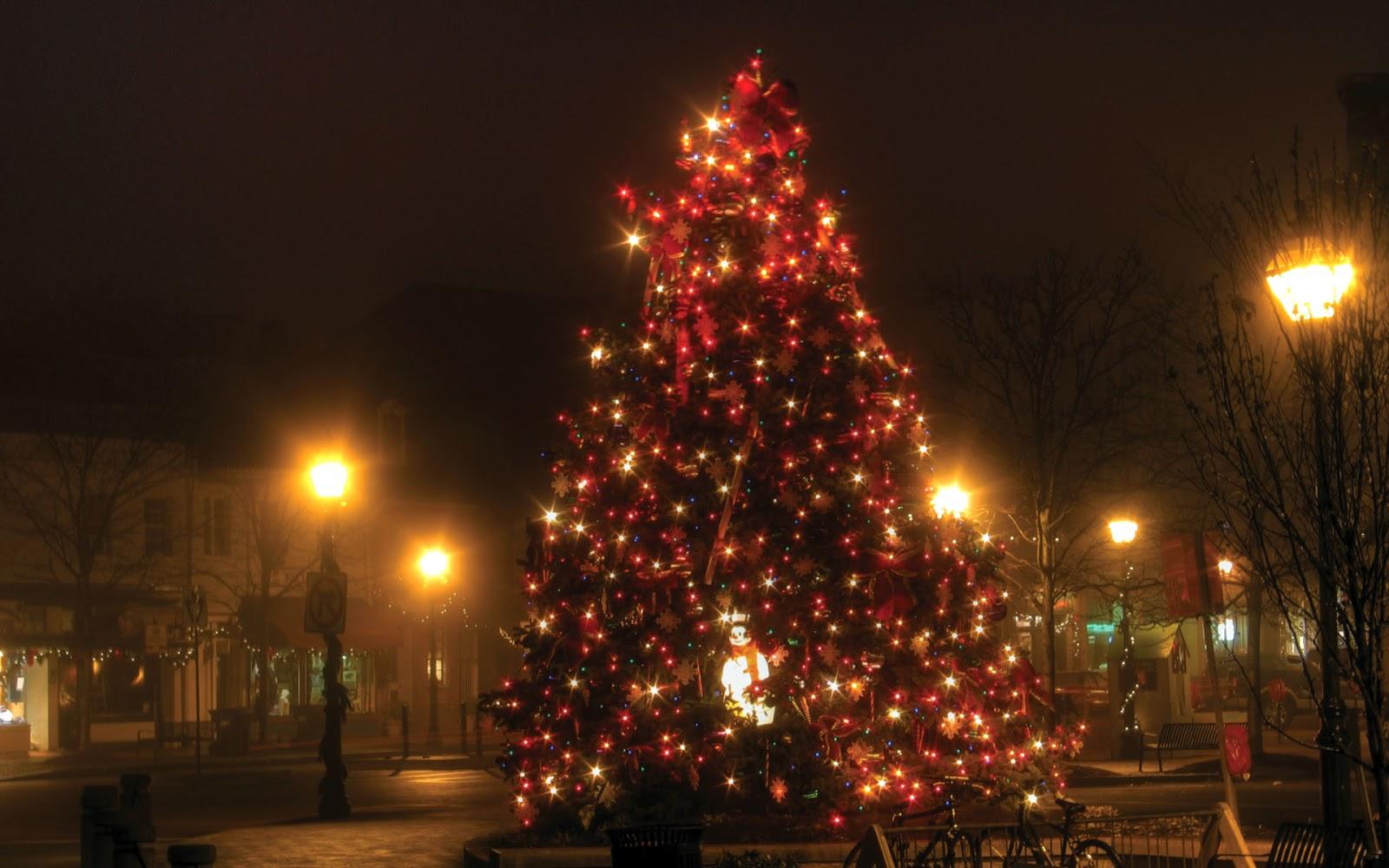 Contrastes do Natal