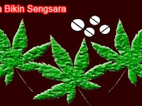Narkoba Bikin Sengsara