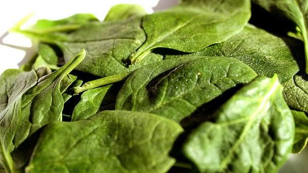 Sayuran berdaun hijau: