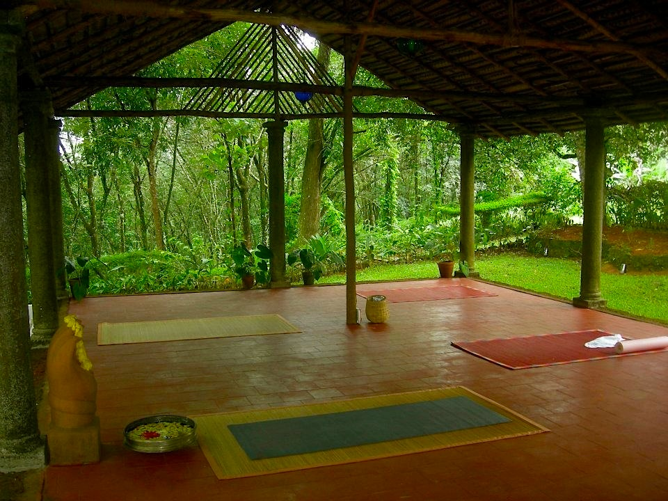 Greetings From Kerala With Yoga To Go Vacations