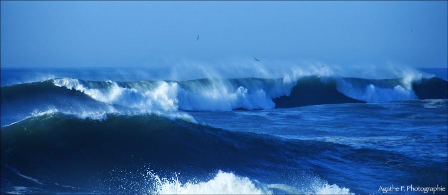 vagues, mer, plage, hendaye