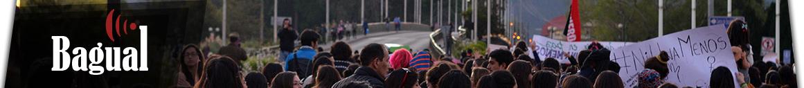 Revista Bagual