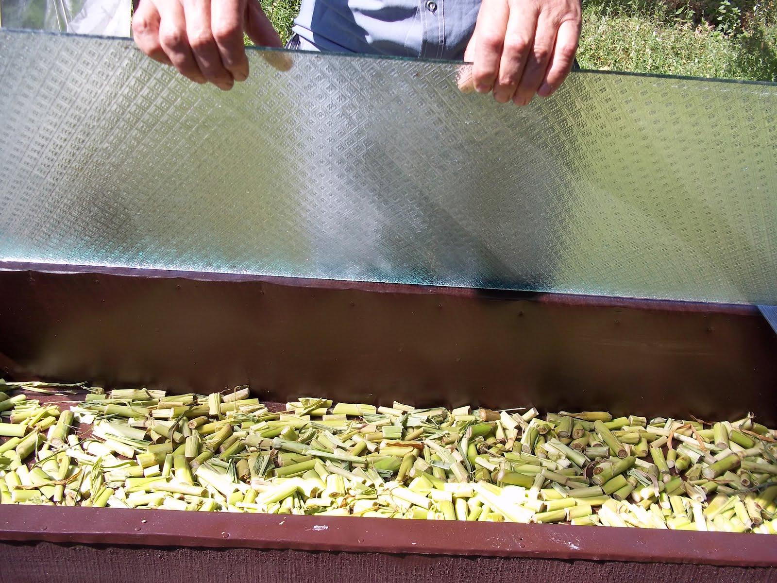 Сушилка для фруктов своими руками. Как сделать сушилку для 70