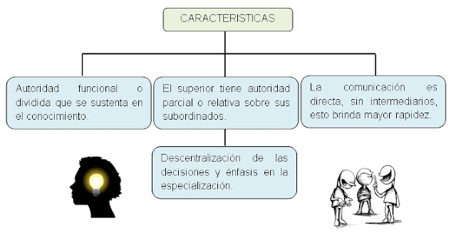 Tipos de estructura altas y bajas: Organización Funcional