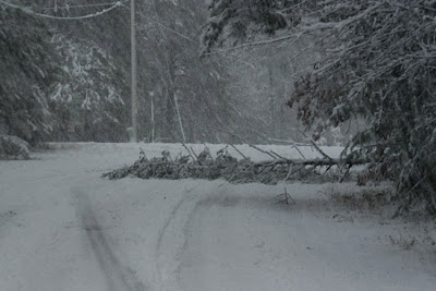 Early Season Snowstorm Challenges Chain Residents