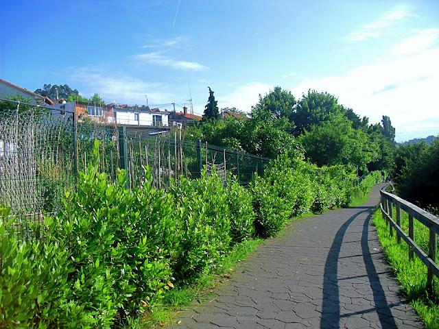 Tramo Las Callejas Itinerario de Ribera Pontejos Pedreña