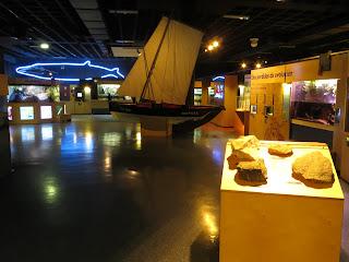 El Acuario de A Coru�a, un espacio dedicado a la ense�anza de los ni�os