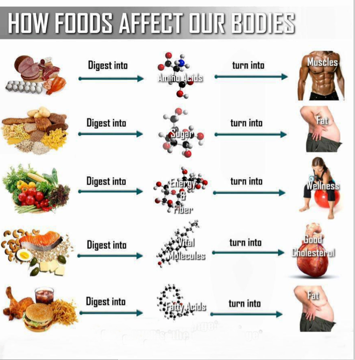 Dieta facil y economica para adelgazar rapido resultados