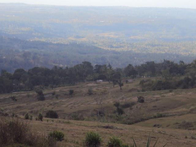 agrowisata sebagai pariwisata alternative: agrowisata ...