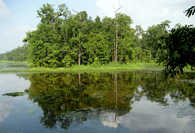 Main body of Bis Hajari Taal with beautiful reflection of the trees