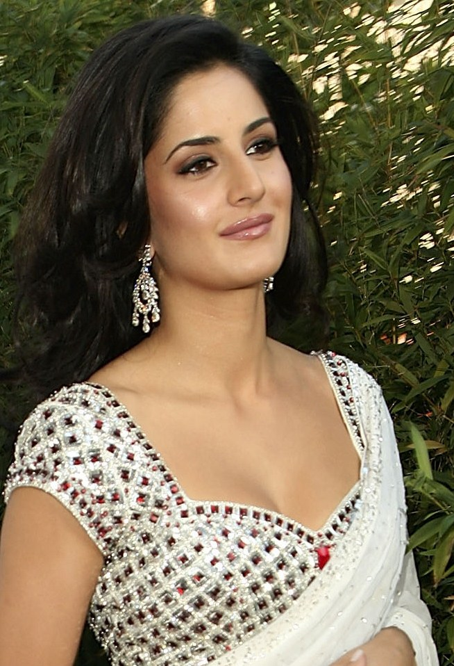 Katrina Kaif Sexiest Cleavage Show In Saree At The Opening Event Of Night Of India Splendor In Beverly Hills, California