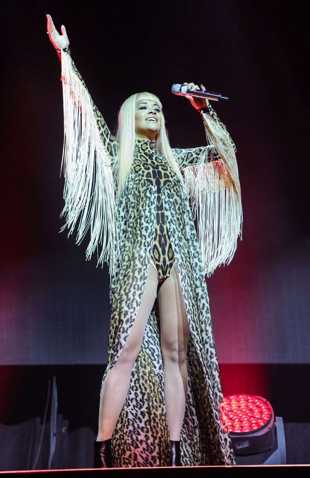 Rita Ora performs in a leopard print leotard at V Festival at Weston Park