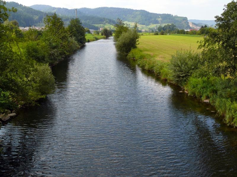 black forest river germany