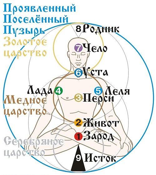 Это интересно и познавательно! – Юджизм – Славянская энергетическая чакровая система