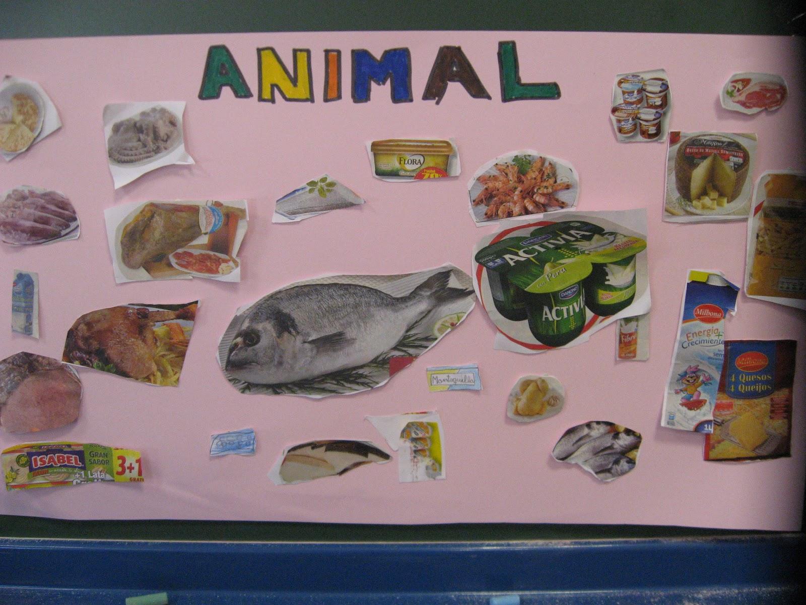 Origen Animal Vegetal Y Mineral