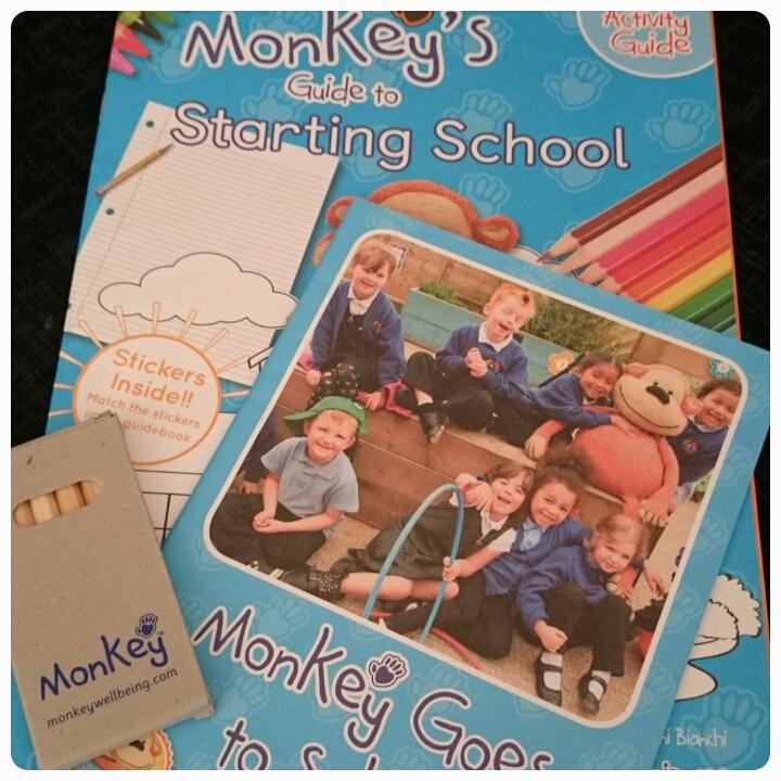 monkey goes to school monkey wellbeing