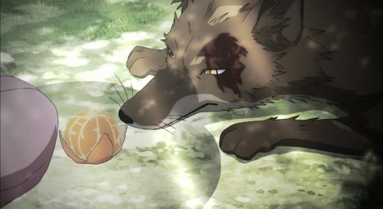 Recenzja anime Gingitsune (2013). Studio Diomedea.