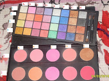 Coastal Scents 42 Eyeshadow and Blush Palette