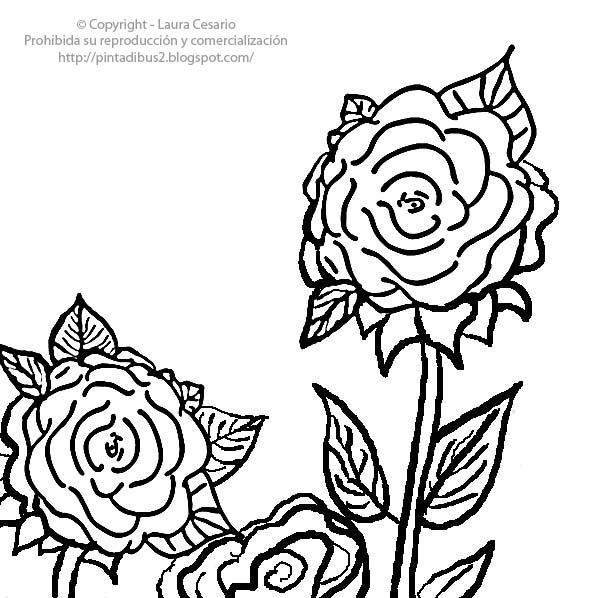 Dibujos para imprimir y colorear – Pinta Dibus: Dibujo de rosas para ...