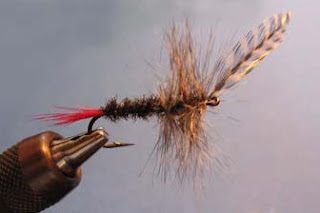 how to tie a heavily-hackled dry fly