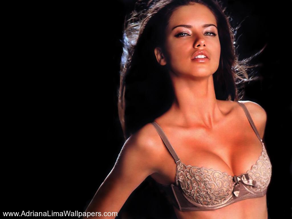 http://3.bp.blogspot.com/-Co7Q8Hx9NNU/T6l_EW20ZiI/AAAAAAAAKns/zKmPtZN_WMA/s1600/Adriana-Lima-Lace-Bra-1.jpeg