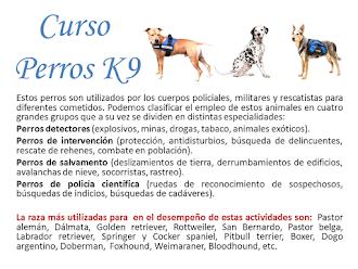 CURSO PERROS K9