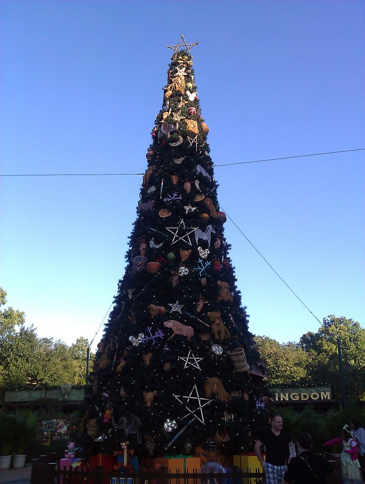 more than 11 miles of garland around walt disney world to celebrate the season and you know that disney pays attention to all the little details - Disney Christmas Trees