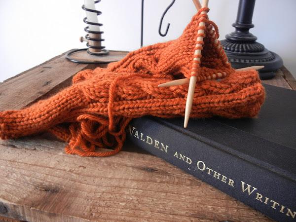 Yarn Along 1/25/12
