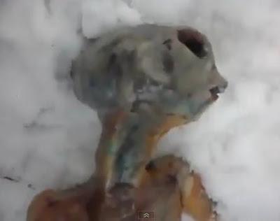extraterrestre encontrado en siberia rusia fotos
