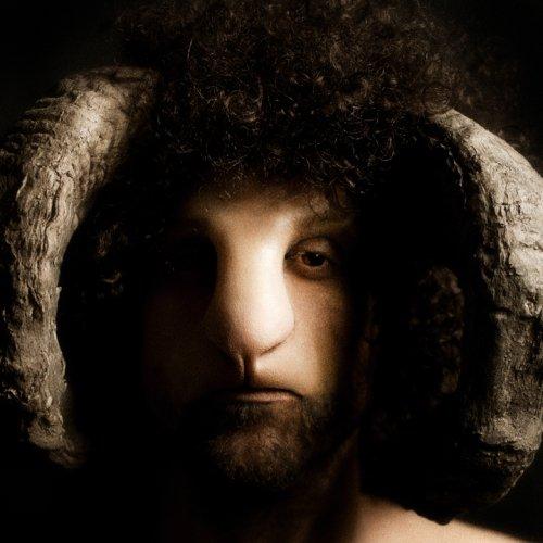 davide luciano fotografia crítica social sheep nation nação ovelhas carneiros rebanho