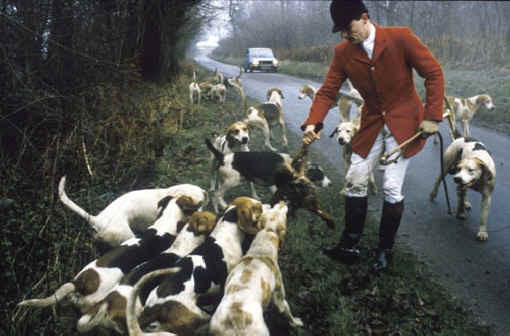 fox hunting barbaric Fox hunting ban stays in place: but opponents fear tories will push for free vote the rspca is pleased to learn that the government currently has no plans to repeal the hunting act and reintroduce such barbaric practices into the british countryside fox hunting wed.