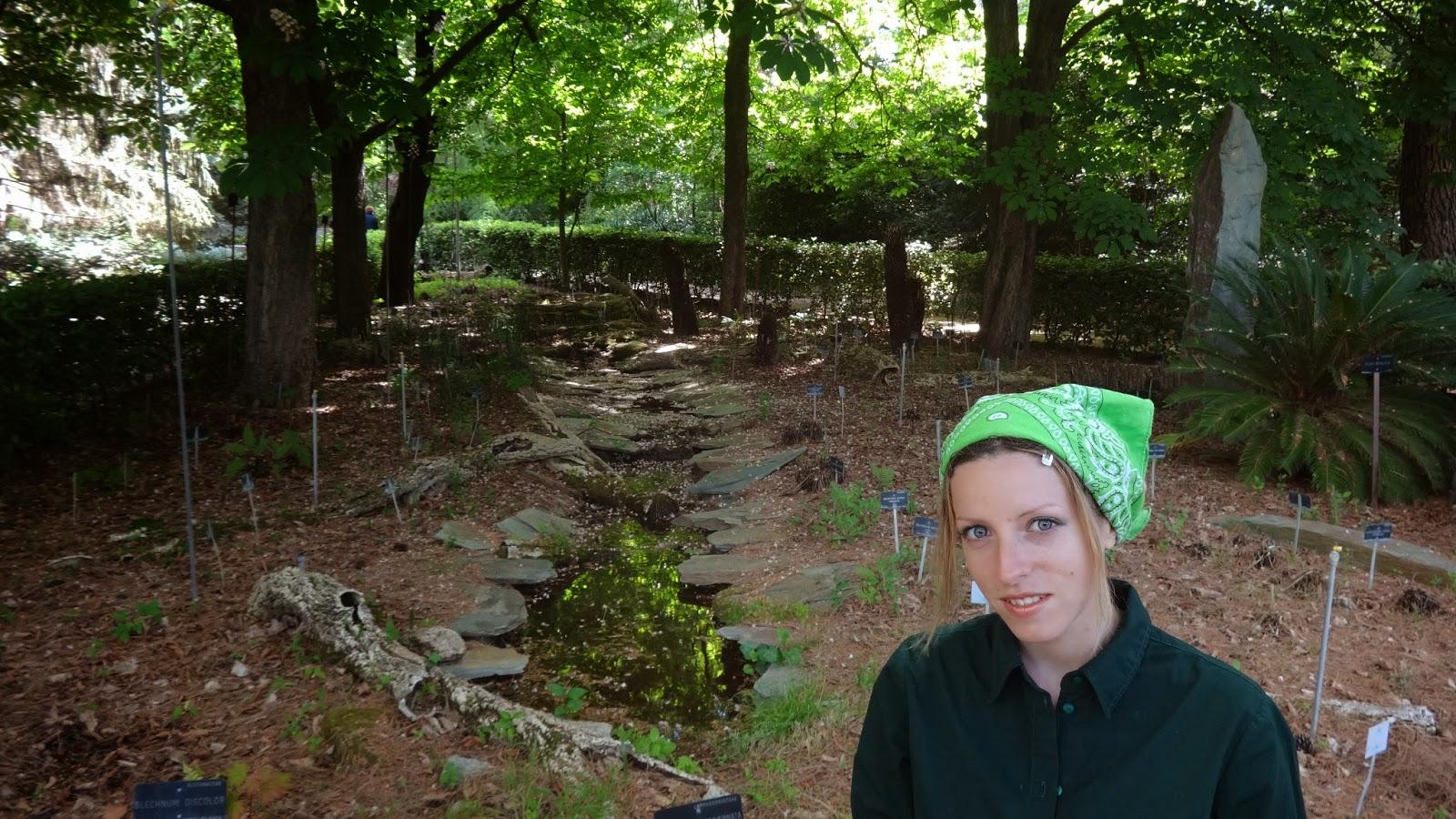 Vsitando el real jard n bot nico de madrid for Jardin botanico madrid horario