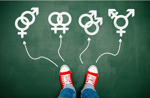 Sexual orientation in the workplace articles