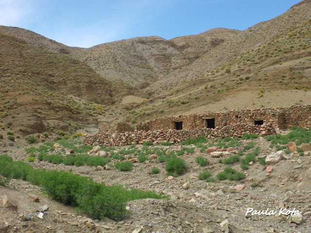 Na Terra do Sol Poente - Viagem a solo por Marrocos - Página 2 IMGP0382