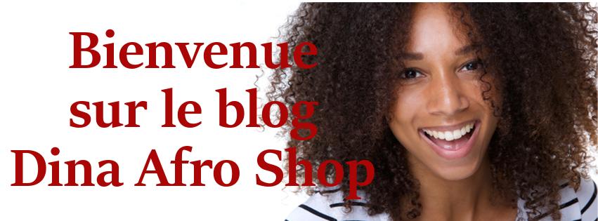 Dina Afro Shop
