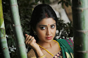 Shriya Saran latest Photos in saree-thumbnail-12