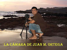 LA CÁMARA DE JUAN M. ORTEGA (PINCHAR AQUÍ SOBRE LA FOTO)