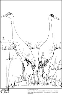 couple of stork coloring pages