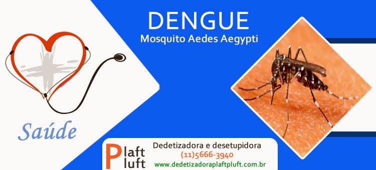 Dengue, mosquito aedes aegypti, como se prevenir, a doença, dedetização plaft pluft