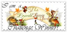 I won the Petal Challenge 1/7/11