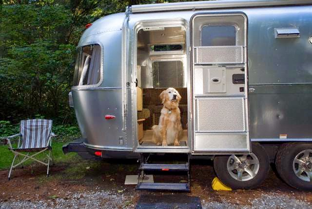 Vet appointments vital before traveling