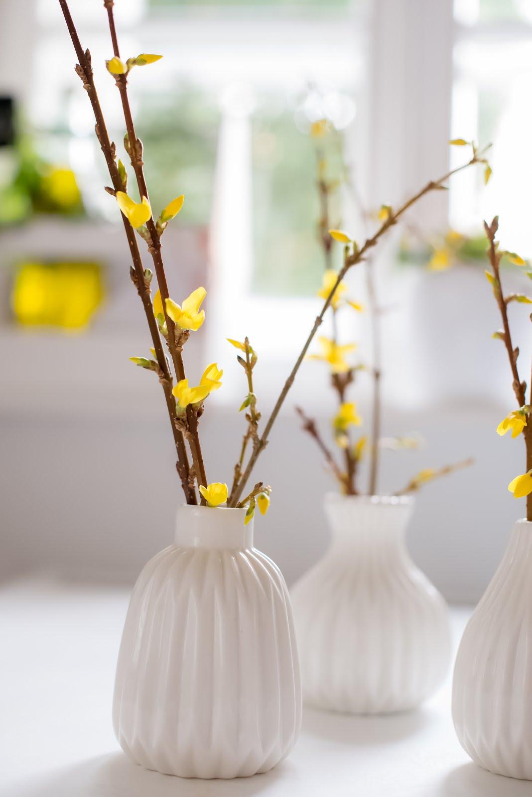 Wiosenne gałązki